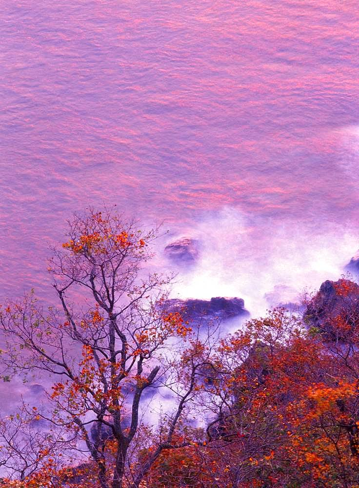 Evening, Hokkaido, Japan