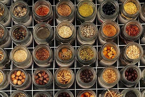 Seed diversity, Millennium Seed Bank, Kew Gardens, England