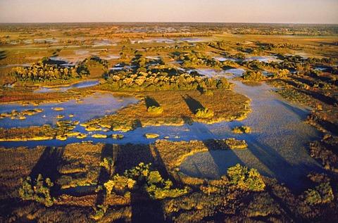 Okavango Delta, aerial view over the wetlands, Botswana
