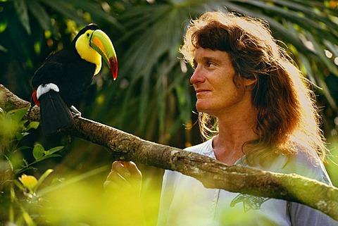 Zoo director with keel-billed toucan, Ramphastos sulfuratus, Belize Zoo, Belize