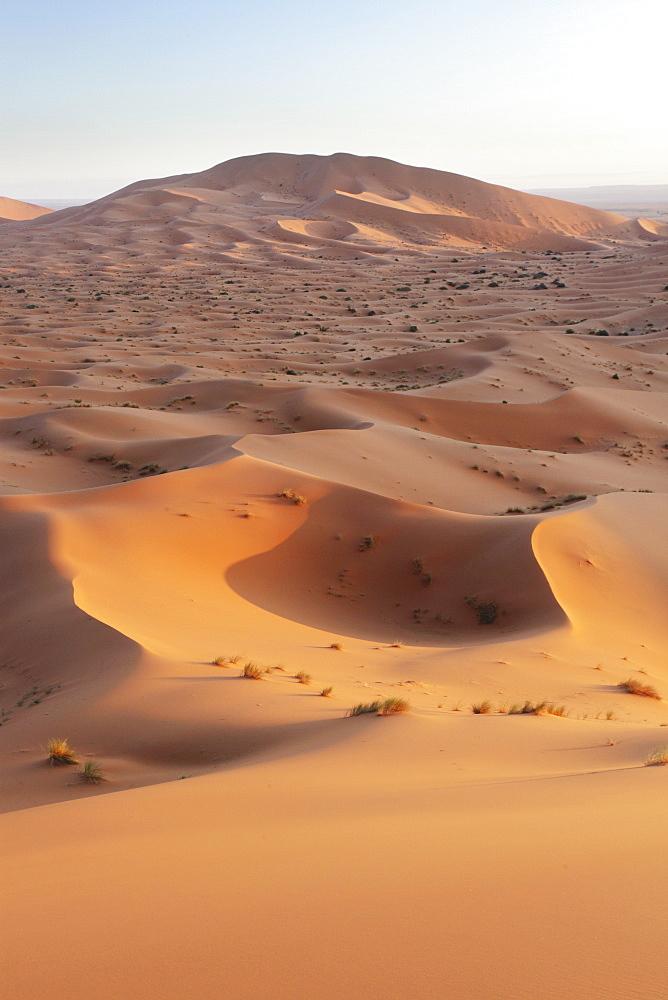 The sand dune desert Erg Chebbi, Morocco, just before sunset