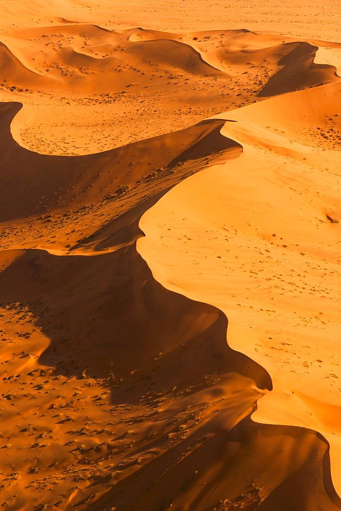 Drifts in the Namibia desert, Sossusvlei, Namibia