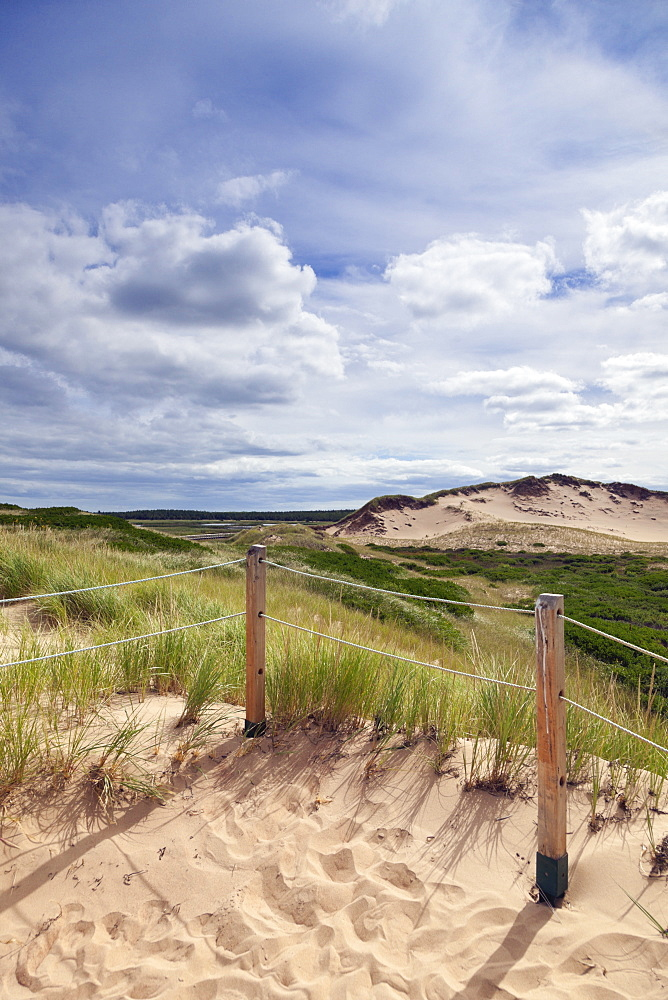 Close-up of sand dunes with wire fence in Prince Edward Island National Park, Canada