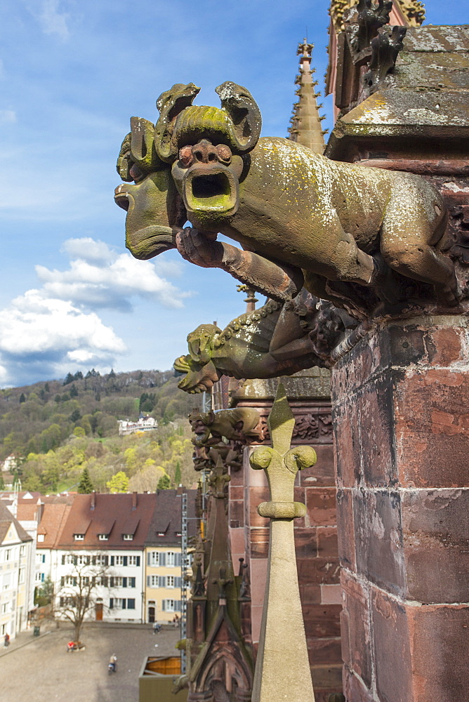 Figure of a gargoyle at Muenster in Freiburg, Germany