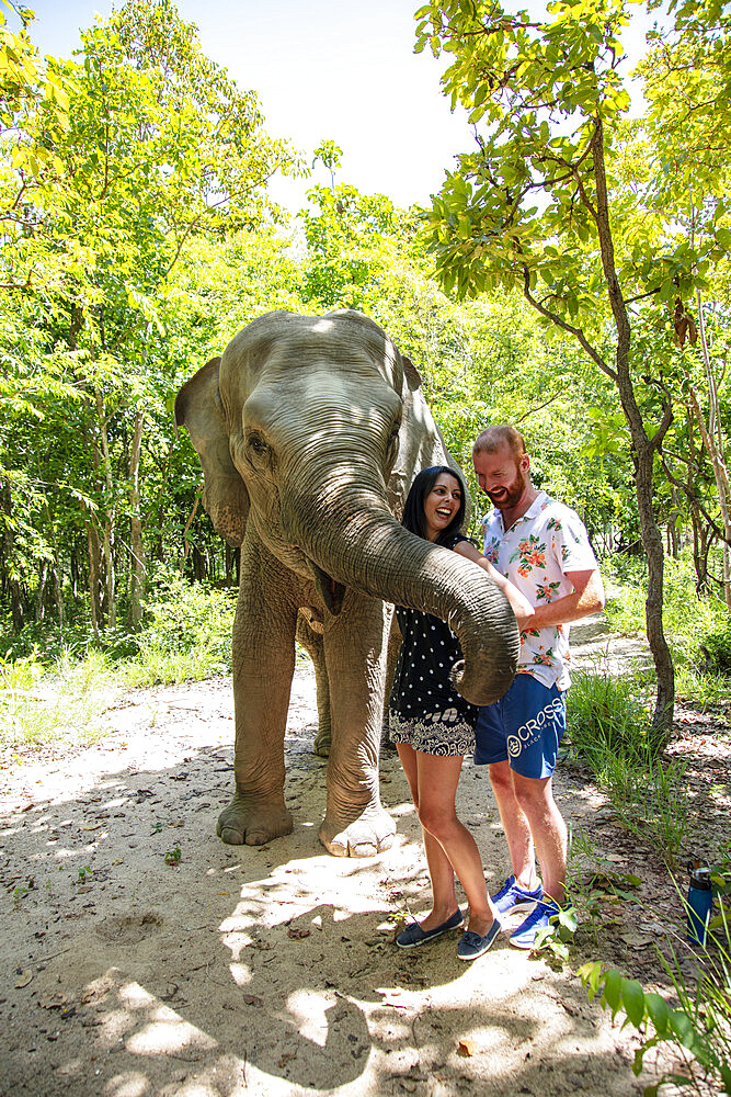 A young couple with a rescued elephant at Phnom Tamao Wildlife Rescue Center (PTWRC) run by Wildlife Alliance, near Phnom Penh, Cambodia, Indochina, Southeast Asia, Asia - 1176-1084
