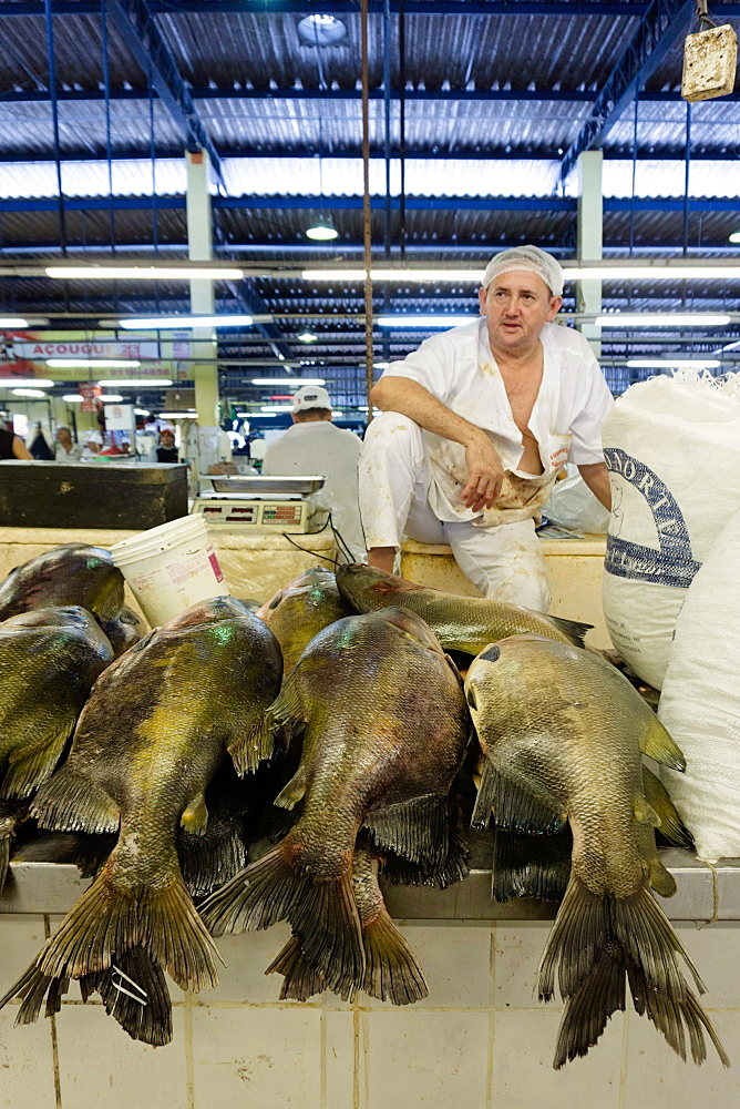 Fishmonger in Belem fish market in the Amazon, Para, Brazil, South America