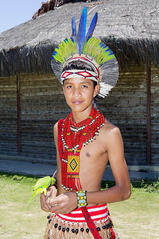 A Pataxo indigenous Brazilian boy from southern Bahia in traditional dress, Bahia, Brazil, South America