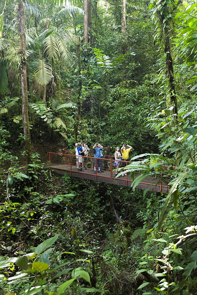 Birdwatchers, Mistico Arenal Hanging Bridges, Alajuela, Costa Rica, Central America
