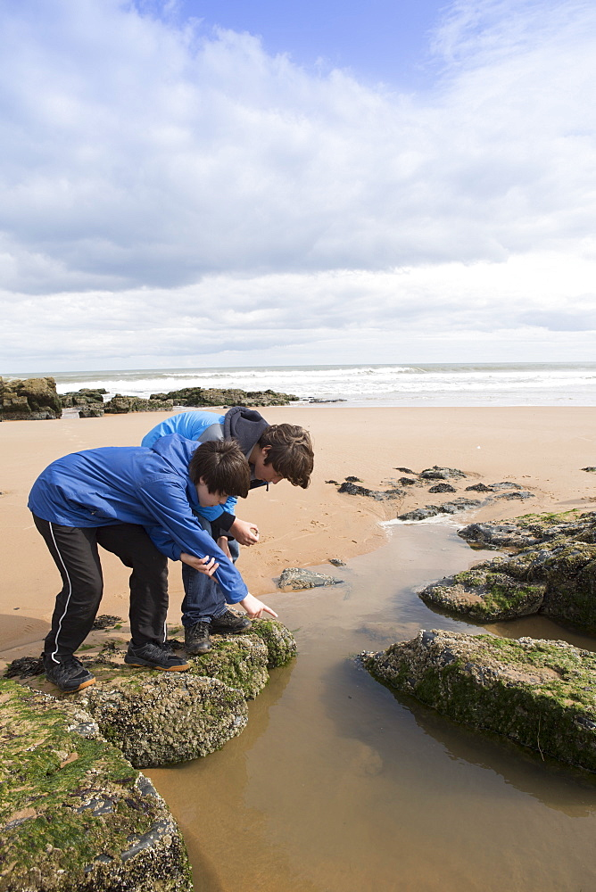 Children playing in a rock pool on the town beach, Ellon, Aberdeenshire, Scotland, United Kingdom, Europe