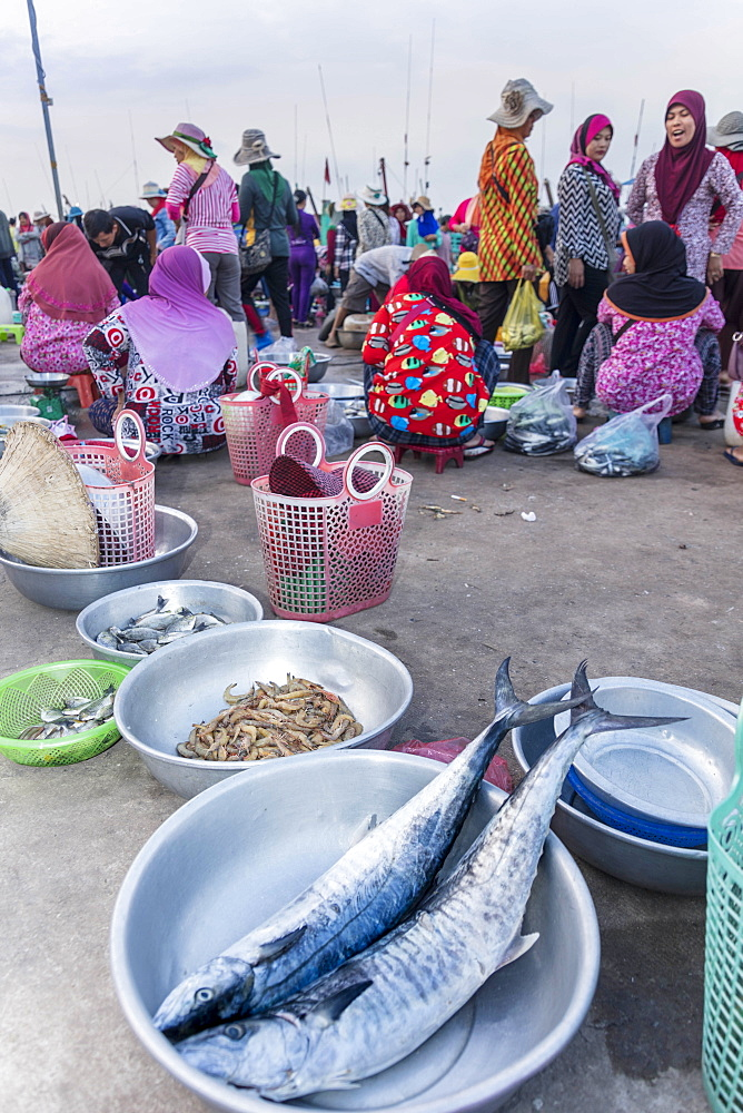 Morning fish market on the banks of the Preaek Tuek Chhu River in Kampot town, Cambodia, Indochina, Southeast Asia, Asia - 1176-937