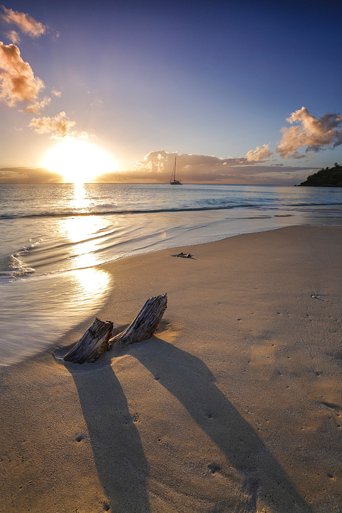The Caribbean sunset frames the remains of tree trunks on Ffryes Beach, Antigua, Antigua and Barbuda, Leeward Islands, West Indies, Caribbean, Central America