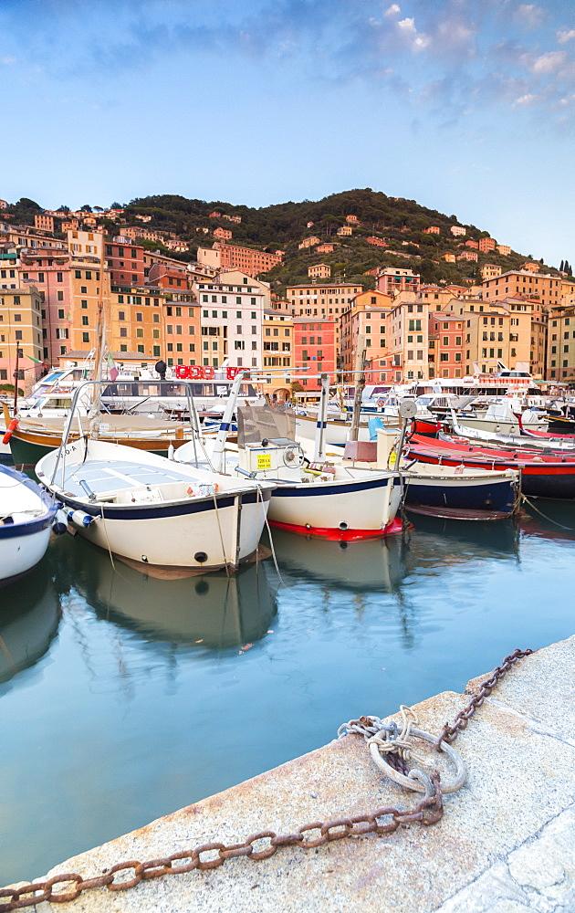 Sunset frames harbour and fishing village Camogli Gulf of Paradise Portofino National Park Genoa province Liguria Italy Europe