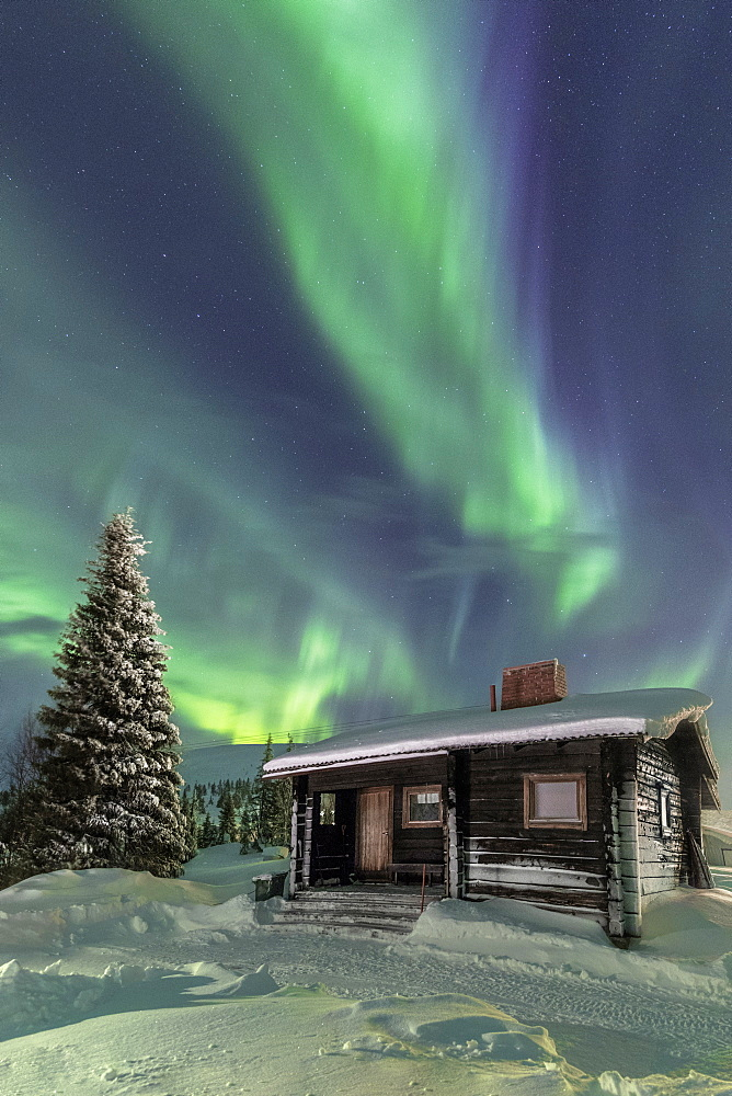 The Northern Lights (Aurora borealis) frame the wooden hut in the snowy woods, Pallas, Yllastunturi National Park, Lapland region, Finland, Europe