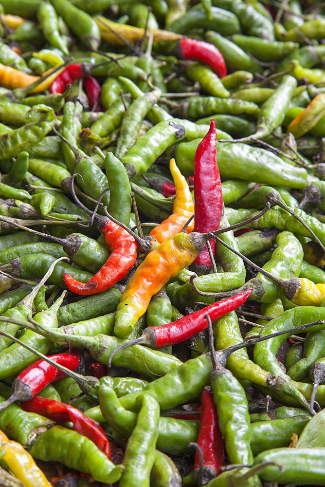 Hot peppers of various color used as food in Indian cuisine considered one of the richest in the world of flavors and fragrances, Nepal, Asia