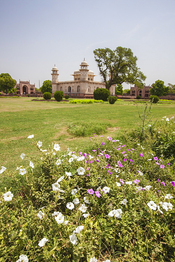 Colorful flowers bloom in the garden Chahar Bagh, site of tombs built during the reign of the Moghuls, Delhi, India, Asia