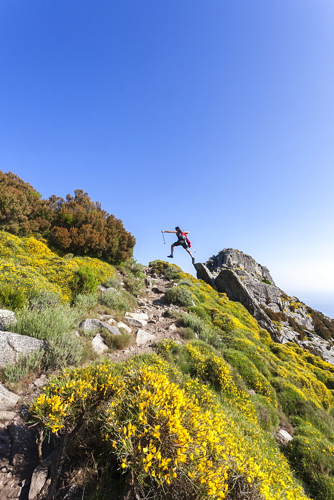 Hiker jumps on rocks on the path to Monte Capanne, Elba Island, Livorno Province, Tuscany, Italy, Europe