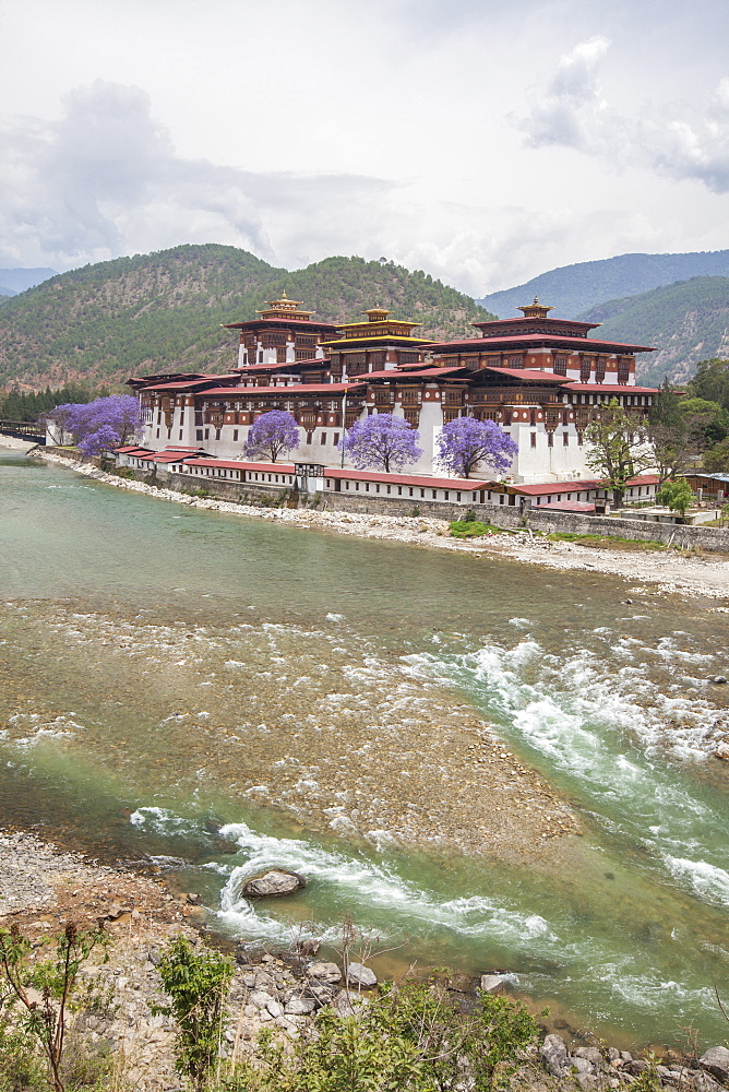 The Punakha Dzong (Pungtang Dechen Photrang Dzong) is the administrative centre of Punakha District in Punakha, Bhutan, Asia