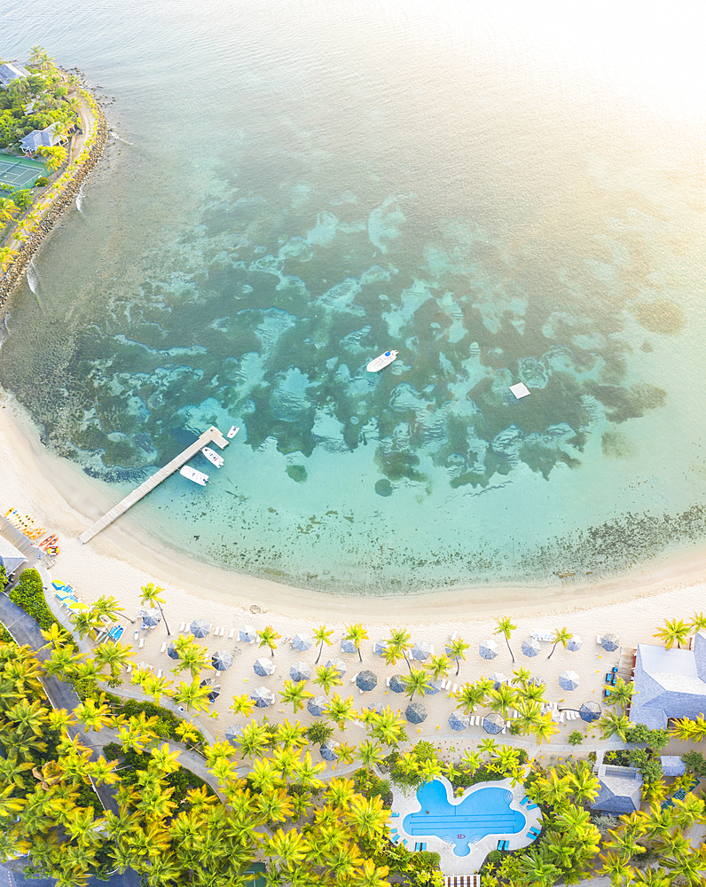 Panoramic of palm-fringed beach of luxury resort washed by Caribbean Sea from above, Morris Bay, Old Road, Antigua, Leeward Islands, West Indies, Caribbean, Central America - 1179-3890