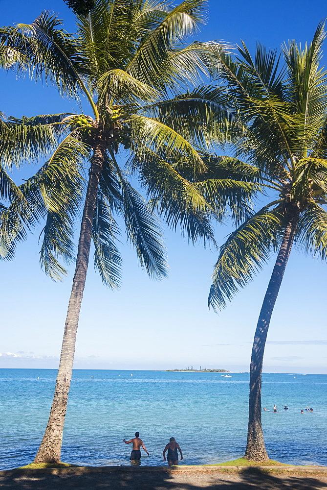 Palm trees, Anse Vata beach, Noumea, New Caledonia