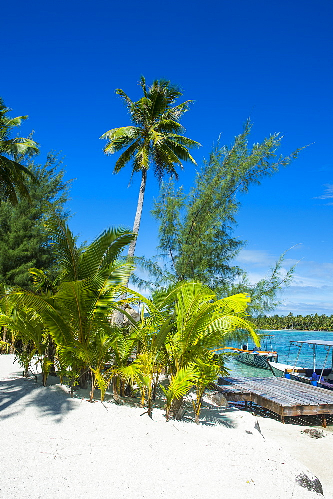 White sand beach on a MotuBora Bora, French Polynesia