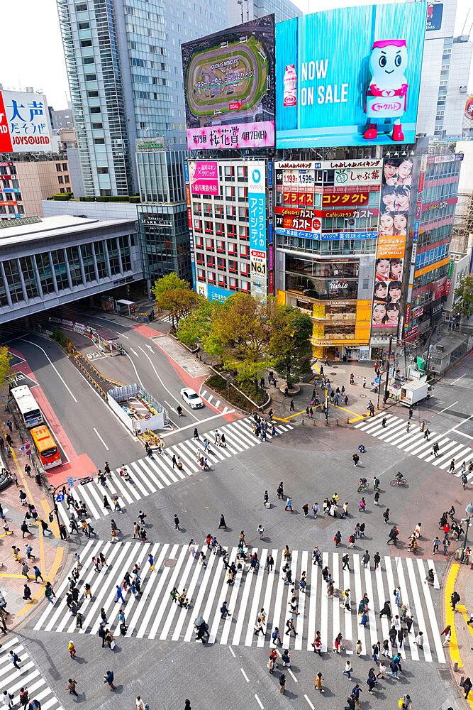 Shinjuku crossing - 1186-786