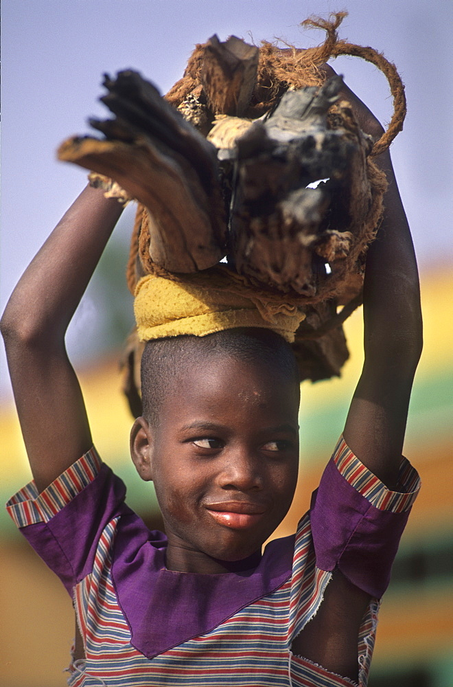 Fuelwood, burkina faso. Silmiougou village. Child carrying fuelwood home