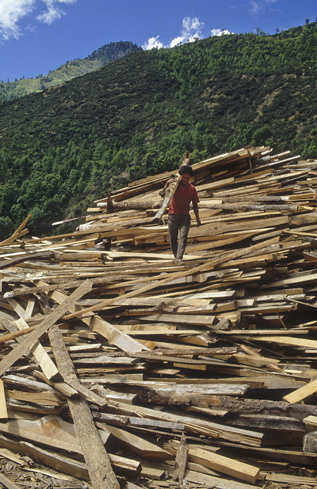 Logging - bhutan. The vast temperate forests are one of bhutans major natural resources. About 60% of the country is covered by forest, much of it untouched. Logging is so carefully controlled, that the timber industry cannot utilize its sawmills to full capacity