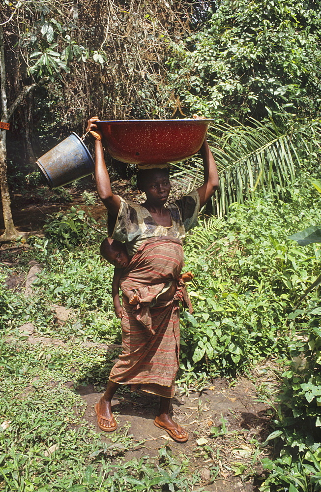 Domestic water, ivory coast. Gbetitapea village, daloa town. Collecting water from a stream