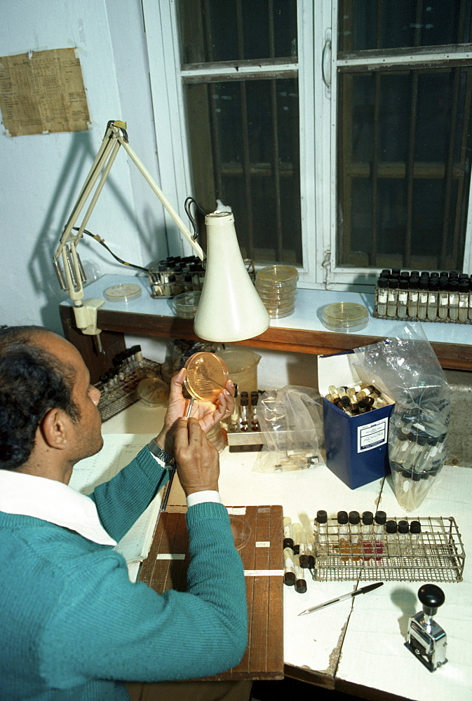 Dacca, bangladesh. Scientist working at international center diarrhoeal disease research (icddr). Laboratory analysing watersamples shigellae which causes diarrhoea