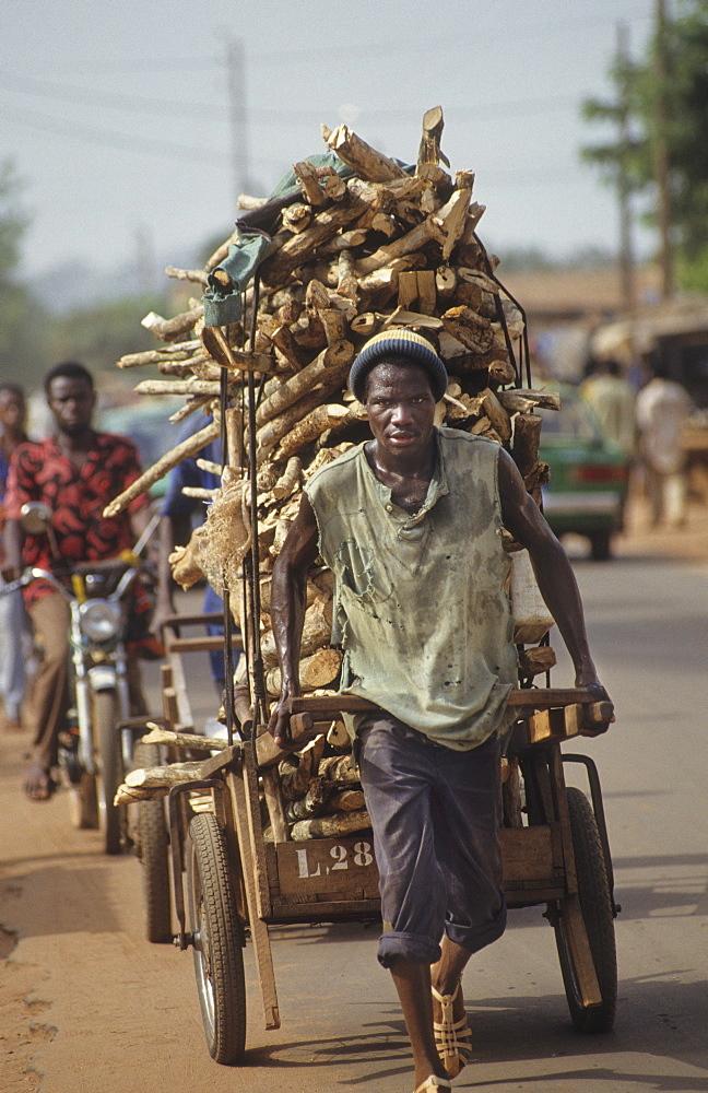 Fuelwood, daloa town, ivory coast. Taking fuelwood to market