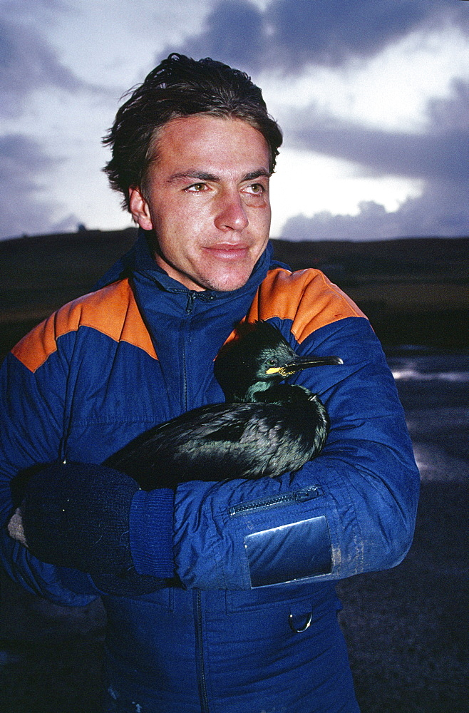 Shetland islands, oil disaster. Volunteer rescuing oiled birds. On 5th january 1993, the oil tanker the braer ran aground in the shetland islands spilling 85,000 tonnes of light crude oil. However, every single day of the year, roughly one-tenth of the amount of oil abroad the braer is quite deliberately flushed into the worlds seas and oceans by ships cleaning out the tanks and bilges