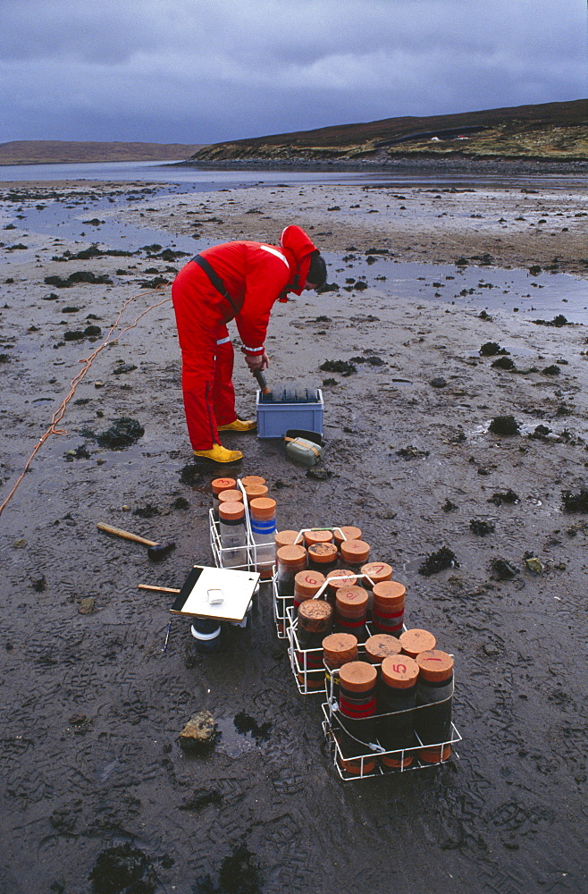 Islands, braer oil disaster. Government scientist monitoring the long-term affects of the oil spill by taking samples of sand for analysis. On 5th january 1993, the oil tanker the braer ran aground in the  islands spilling 85,000 tonnes of light crude oil.