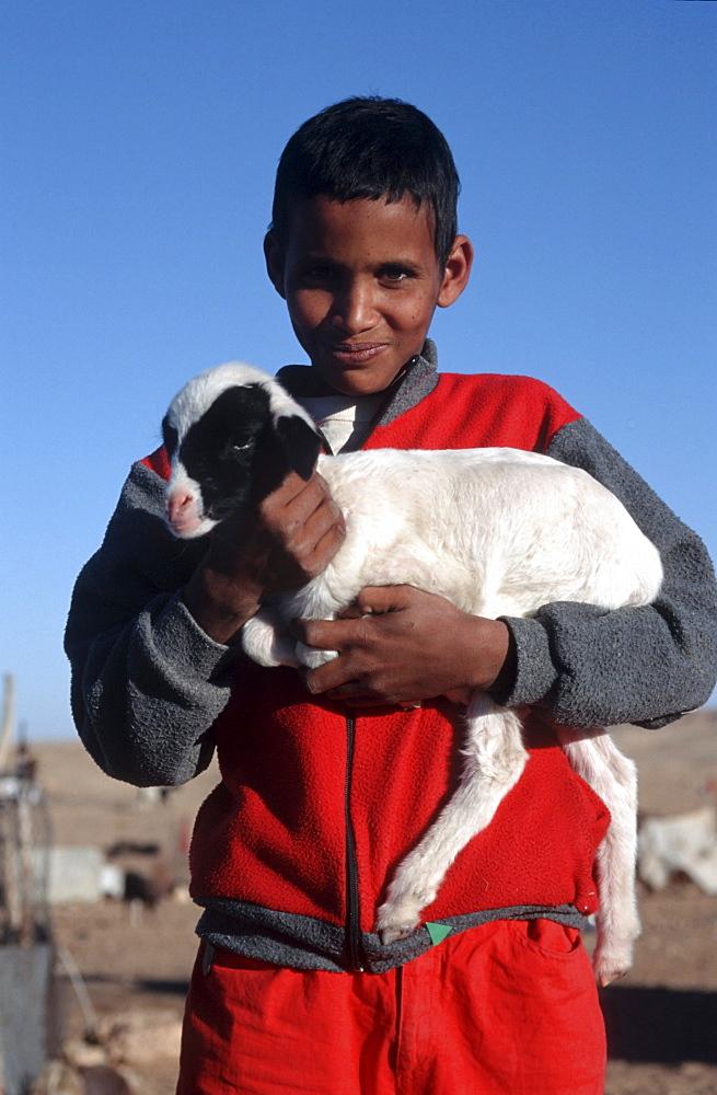 Western sahara. Child and goat in polisario smara camp.