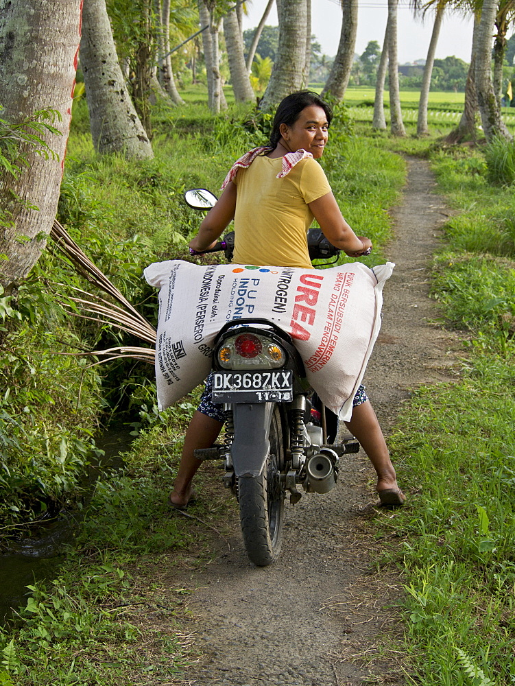 Woman carrying sack of rice on motorcycle in the highlands in Bali, Indonesia