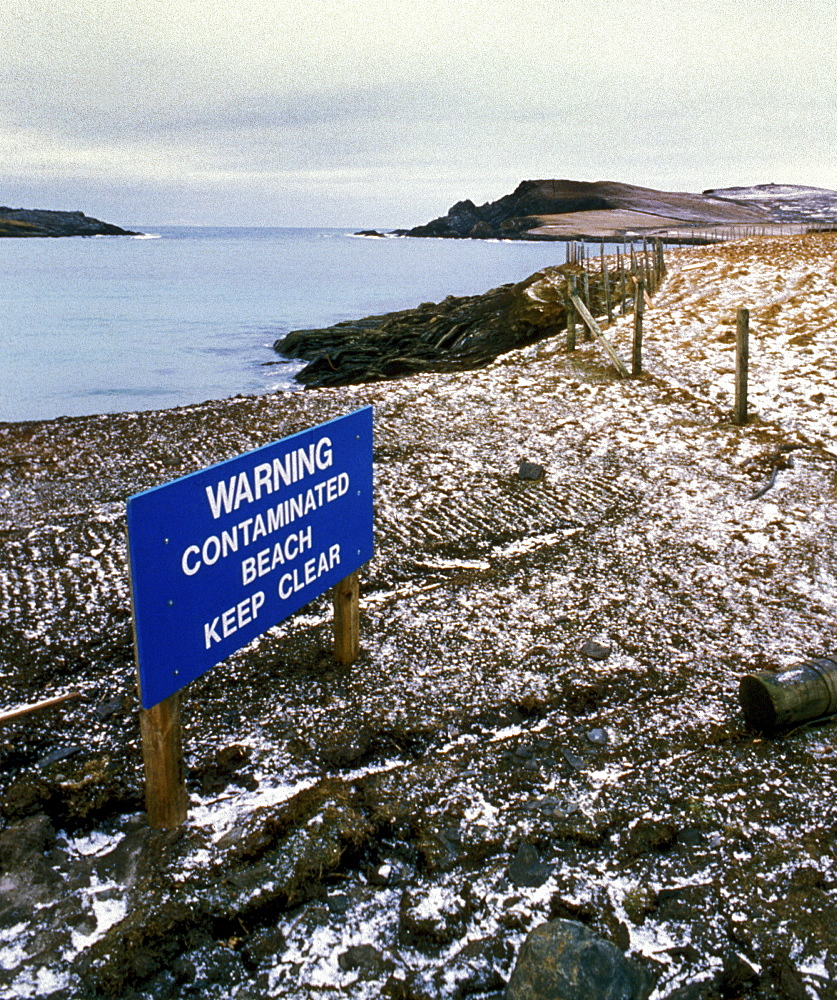 Contaminated beach, uk. Scotland, shetland islands. Shetland after braer 1993