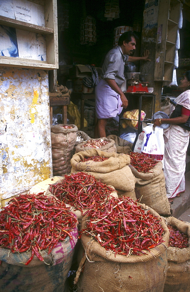 India - food: red chillis on sale at a spice shop, trivandrum, kerala