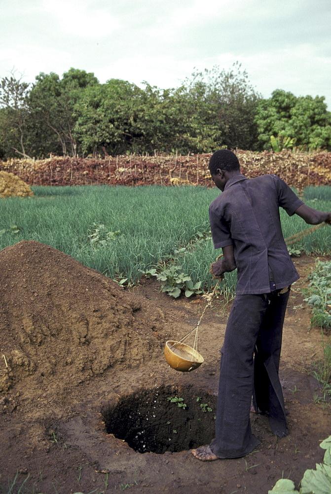 Man watering vegetable garden a small, segou.