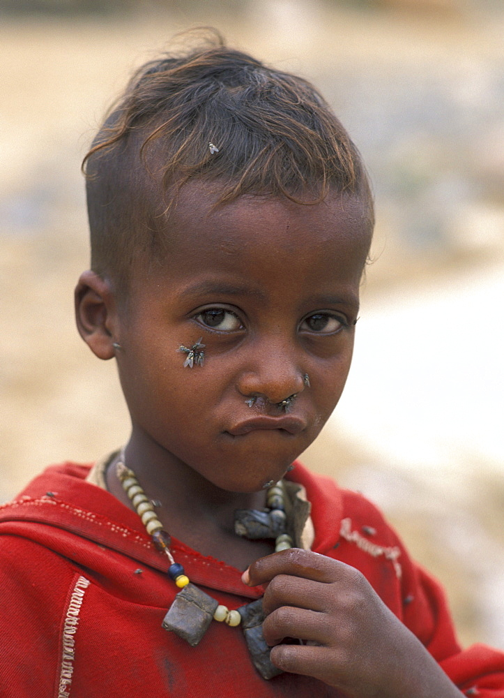 Ethiopia boy of mekelle, tigray, waiting at distribution centre