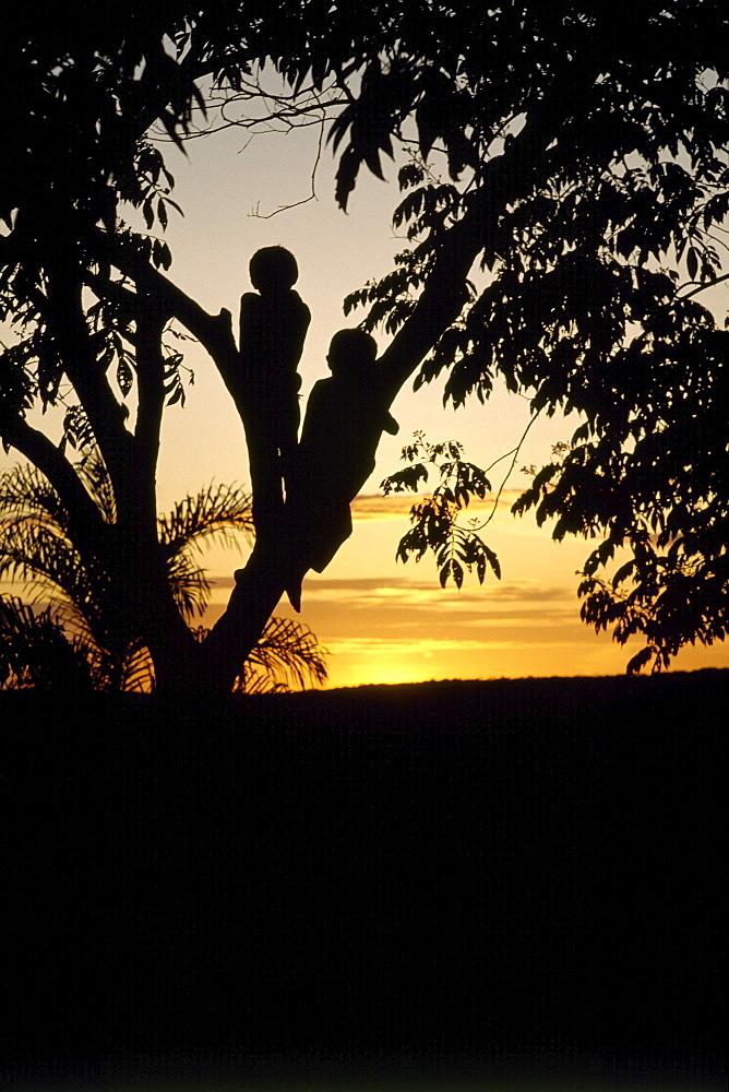 Sunset,makuna,colombia
