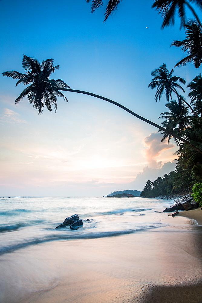 Mirissa Beach, Mirissa, Matara District, Southern Province, Sri Lanka, Asia