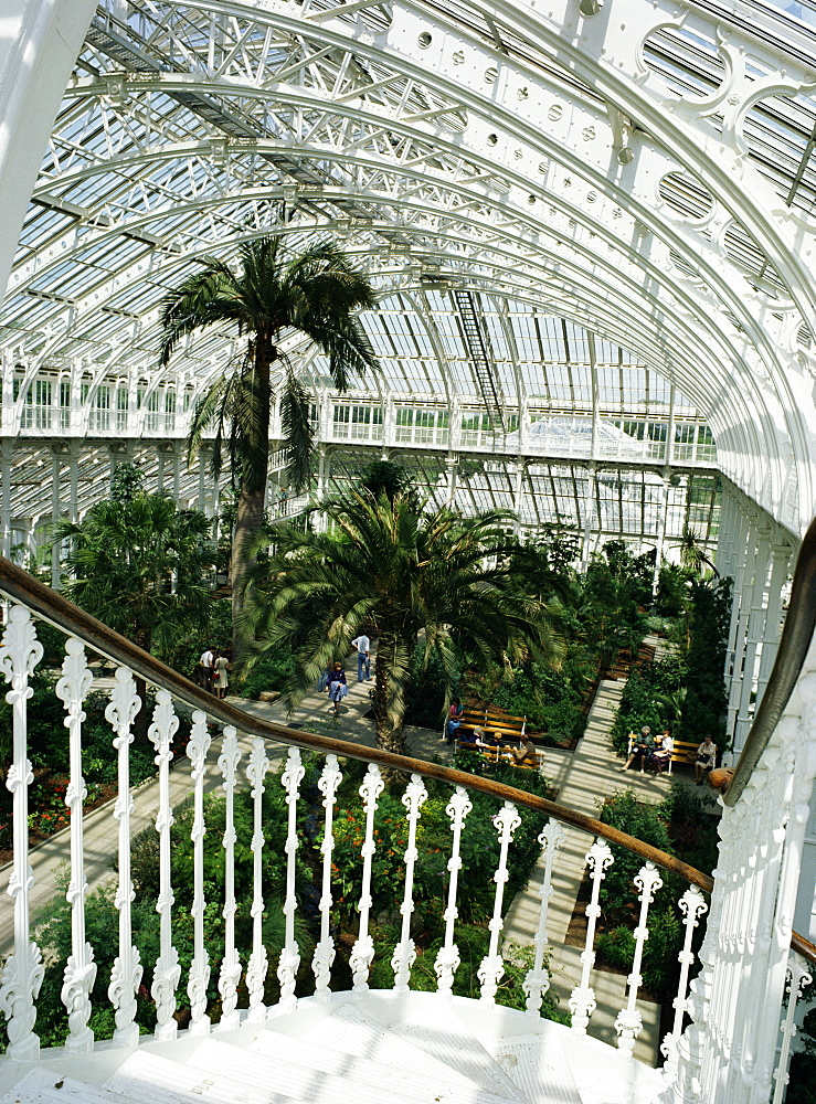 Interior of the Temperate House, restored in 1982, Kew Gardens, UNESCO World Heritage Site, Greater London, England, United Kingdom, Europe