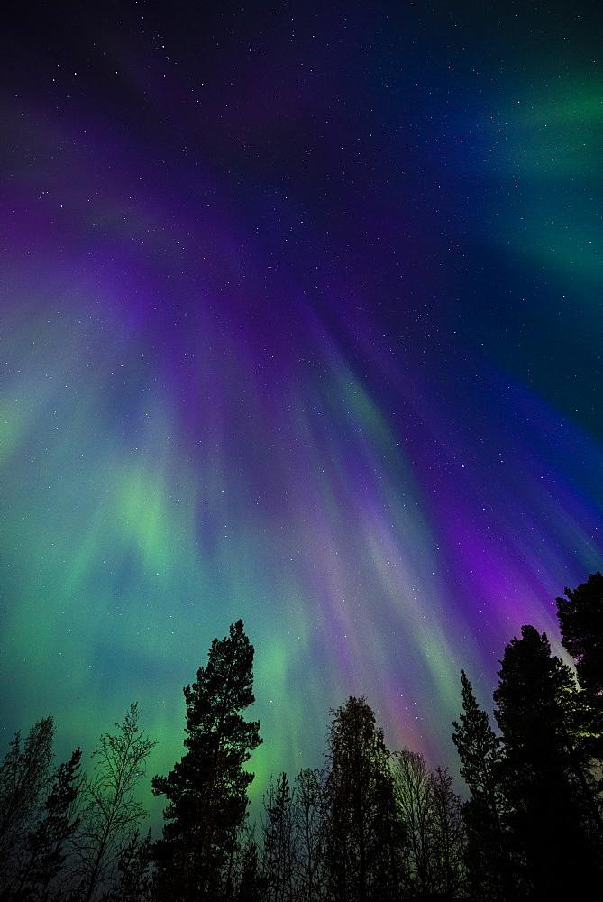 Aurora borealis, corona, Muonio, Finland, Scandinavia, Europe - 1200-17