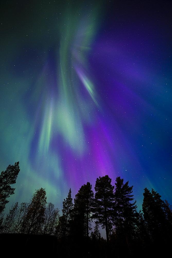 Aurora borealis, corona, Muonio, Finland, Scandinavia, Europe - 1200-18