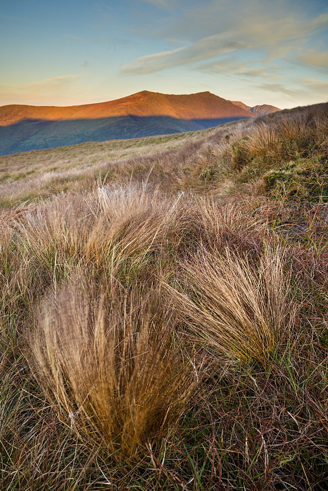 Grass and mountain peak at sunrise, Conor Pass, Dingle Peninsula, County Kerry, Munster, Republic of Ireland, Europe