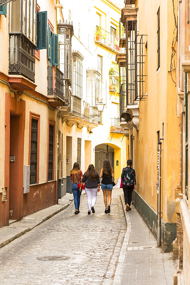 Santa Cruz district, Seville, Andalusia (Andalucia), Spain, Europe - 1207-235