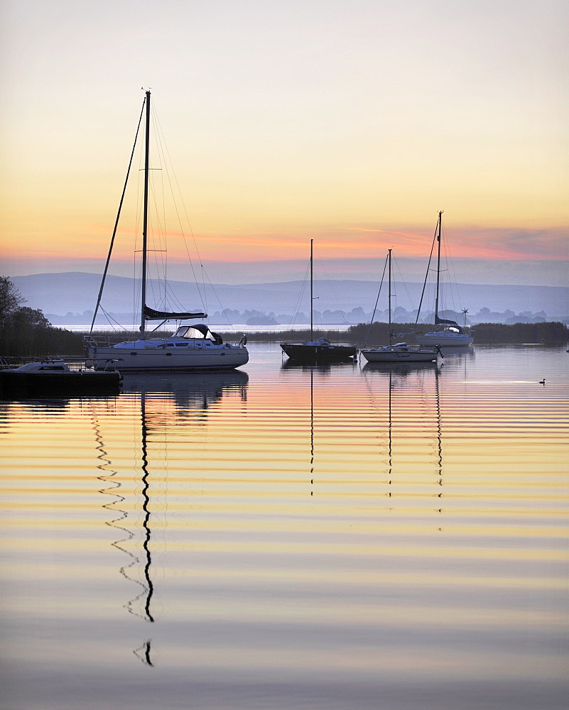 Yachts moored on Lough Derg in the early morning, River Shannon, Portumna, Co Galway, Republic of Ireland, Europe