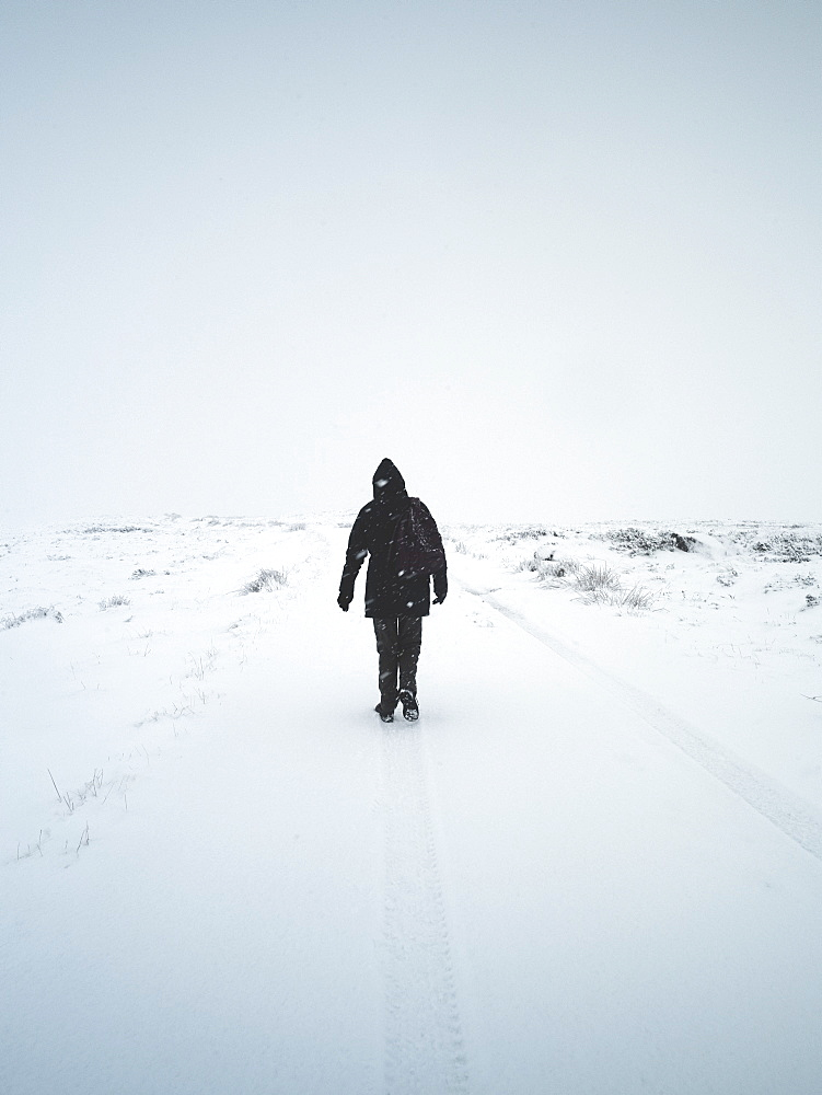 A lone woman walks through a snowstorm, Scotland, United Kingdom, Europe