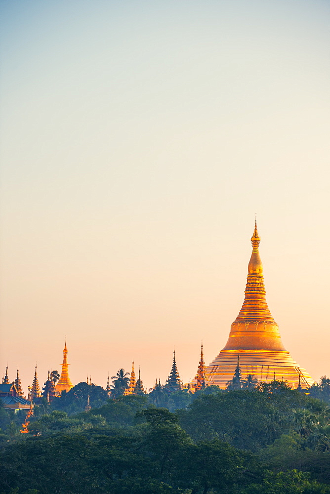 Shwedagon Pagoda, the most sacred Buddhist pagoda in Myanmar, Yangon (Rangoon), Myanmar (Burma), Asia - 1212-445