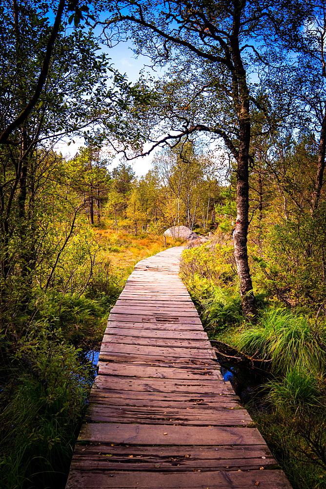 Hiking to Pulpit Rock, Stavanger, Norway, Scandinavia, Europe - 1215-33