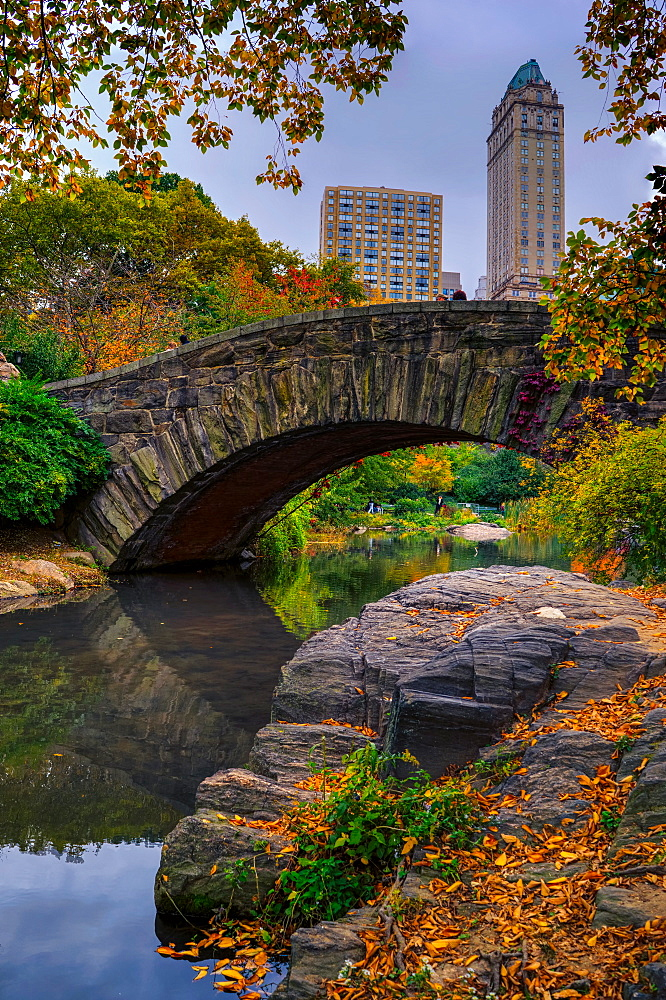 Central Park, New York City, United States of America, North America - 1215-4